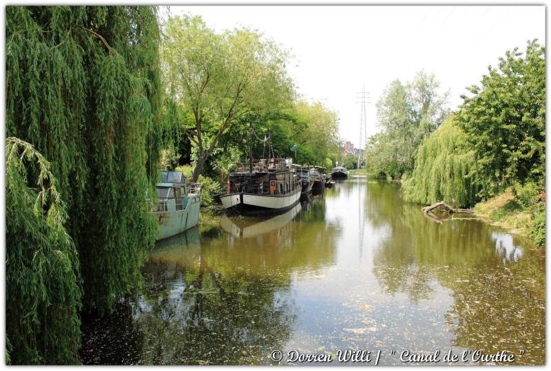 dpp_canal---0010-3522918.jpg